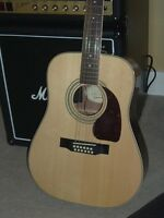 Fabulous Acoustic/Electric 12 String