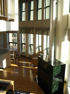 ONE OF A KIND, BEAUTIFUL PENTHOUSE LOFT, GREAT VIEWS IN GASTOWN
