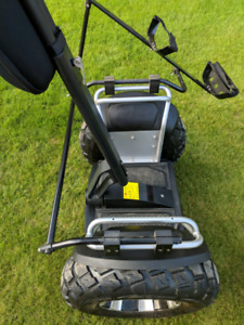 Full size segway style self balancing scooter with golf bag atta
