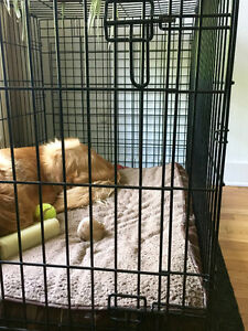 Cage pour grand chien/Crate for large dog