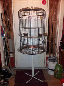 Large bird (parrot) cage