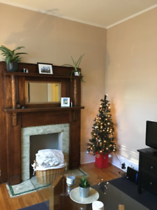 1 Bedroom Apartment For Rent Immediately or January 1st