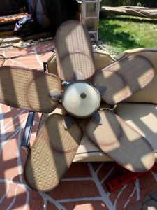 Outdoor ceiling fan with extras