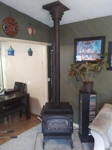 Very clean and well maintained Regency Gas Fireplace Williams Lake Cariboo Area image 2