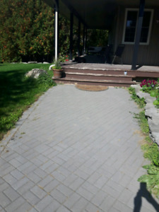 Patio stones for a walkway