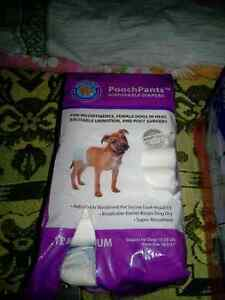 10 dog diapers
