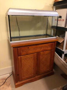 20 Gallon Fish Tank - Stand and Supplies Included