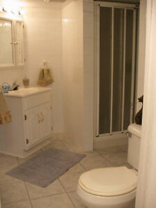 Quiet 1 bedroom apartment in owner's quiet house near downtown London Ontario image 4