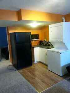 cozy 1 bedroom basement in Mckenzie Towne, available Sept 1st