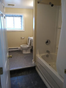 Large 4 Bed Apt Next To UNB/STU For May 1 or Sept.1!