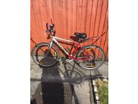 Giant 21 speed mountain bike