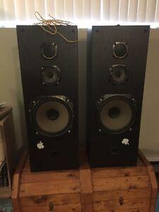 Speakers 100w each