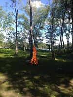 Beautiful Turtle Lake waterfront lot, Muskoka / Parry Sound