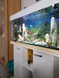 Hi gloss white jewel 3ft fish tank full set up 2 internal filter