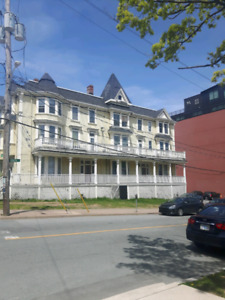 Cozy 1 bedroom apartment Available July 1st- South end Halifax