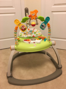 Used Fisher Price Woodland Friends Jumperoo