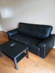sofa used only two months for sale for $250