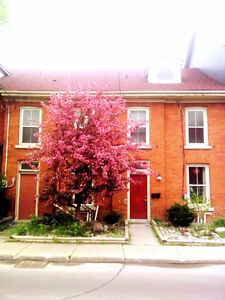 Jan1  AI/FF/room in Historic Downtown Home/Short-trm or Long-trm Kingston Kingston Area image 9