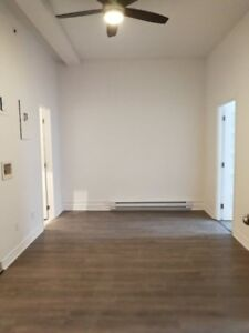 Downtown 2bd  – NEW FULLY RENOVATED – December