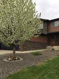 Beautiful Home for sale in Stony Plain