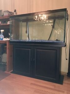 90 Gallon Fish Tank w Stand & Entire SetUp Included