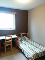 Furnished Room 3min walk to Dalhousie LRT Available Dec 1st.