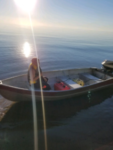 12' aluminum with evinrude 18hp fastwin..