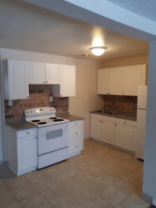 Peace & Quiet at its Finest! Newly Renovated 3 Bedroom For Rent