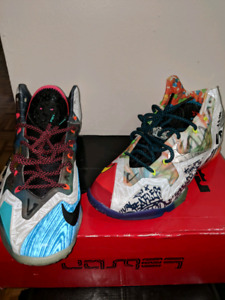 "DS Nike ""What The Lebron"" 11"