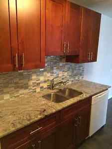 Fully renovated 1 bedroom for rent at West Edmonton!Pictures say Edmonton Edmonton Area image 9