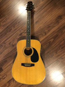 Lado Hawk Series Acoustic Guitar with Bag and Accessories