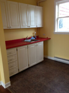 Beautiful 2 bedroom apartment downtown (close to The Rooms)