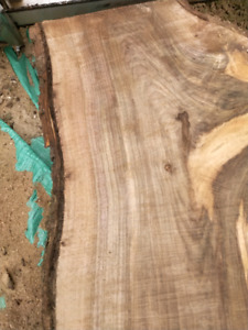 Live Edge Black Walnut Slabs - Delivery Available!