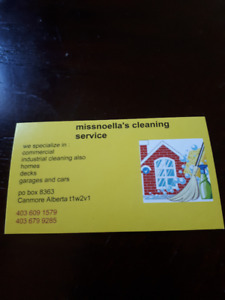 missnoella's cleaning service