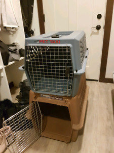 Medium Dog crate (brown one sold)