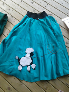 Poodle Skirt for Halloween