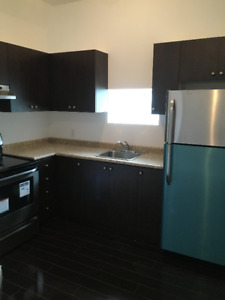 Brand new 2 bedroom apartment for rent in Palmerston / TG Minto