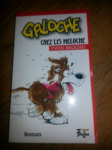 Lot de 11 romans jeunesse français
