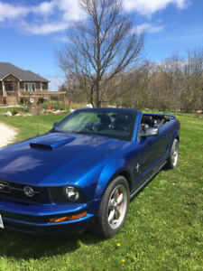 2006 Mustang convertible. Looking to trade for Jeep TJ.