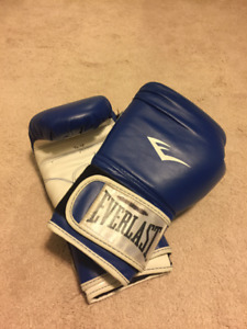 Everlast 16oz Boxing Gloves