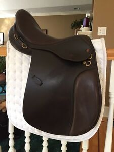 "17"" Santa Cruz saddle"