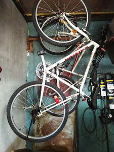 Pair of matching adult Raleigh Mountain bikes