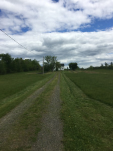 49 acre Hobby Farm and tractor for sale near Harcourt