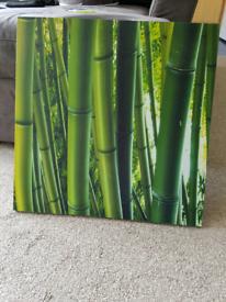 Bamboo In Scotland Furniture Homeware For Gumtree