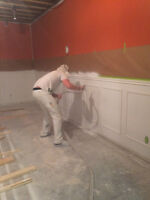 Fully Insured Professional Painter