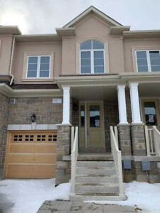 Stoney Creek Mountain 3+1Bedrooms 4 Washrooms House For Rent