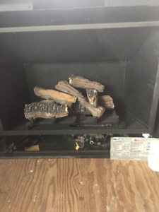 REGENCY GAS FIREPLACE INSERT