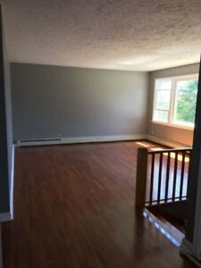 3 Bedroom Main Level Flat- Dog Friendly- Available July 1st