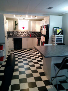 Bright Furnished Inclusive Basement Suite for You!!!
