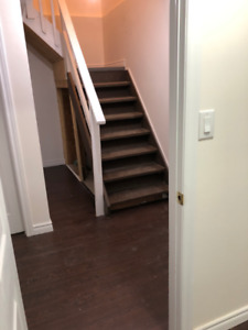 BASEMENT APARTMENT FOR RENT - AVAILABLE FROM JANUARY 2019
